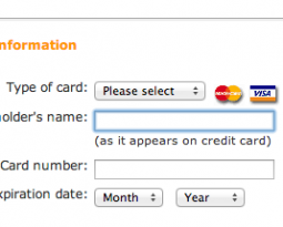 eCommerce Strategy: Credit Card Checkout